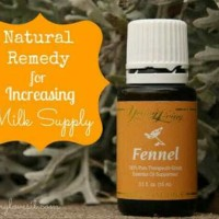 Young Living Essential Oil Fennel 15ml