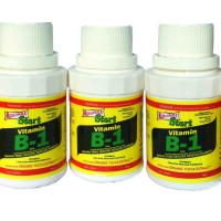 PUPUK VIT B1 VITAMIN -  B1 Liquinox 100 Ml