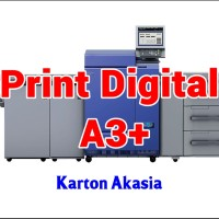 Print Digital A3  32.5 x 48.5 cm - Karton Akasia