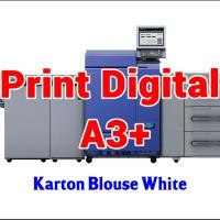 Print Digital A3  32.5 x 48.5 cm - Karton Blouse White