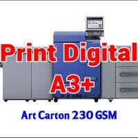 Print Digital A3  32.5 x 48.5 cm - Art Carton 230 GSM