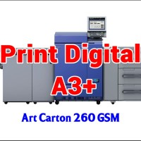 Print Digital A3  32.5 x 48.5 cm - Art Carton 260 GSM