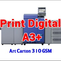 Print Digital A3  32.5 x 48.5 cm - Art Carton 310 GSM