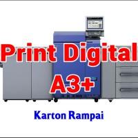 Print Digital A3  32.5 x 48.5 cm - Karton Rampai