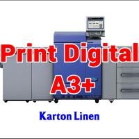 Print Digital A3  32.5 x 48.5 cm - Karton Linen