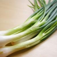 DAUN BAWANG FRESH / Allium fistulosum (500gr)
