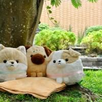 Jual Bantal Selimut (BALMUT) Puppy Dog Series Murah