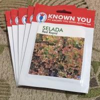 Benih Lettuce Red Rapid Selada Merah Known You Seed, original packing