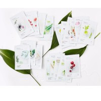 INNISFREE ITS REAL SQUEEZE MASK GROSIR