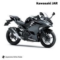 Kawasaki 2018 Ninja 250 - Black