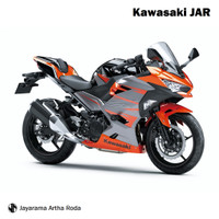 Kawasaki 2018 Ninja 250 ABS Special Edition MDP