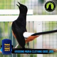 harga Kerodong Krodong Sangkar Burung Murai Clothing Ebod Jaya Tokopedia.com
