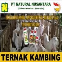 Paket Penggemukan Ternak Kambing Dan Domba Pakan Fermentasi