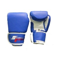 Stamina Boxing Gloves PRO 10 oz Blue