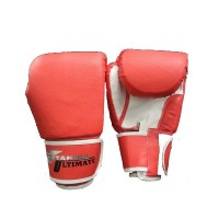 Stamina Boxing Gloves PRO 10 oz Red
