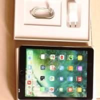 Ipad Air 2 16GB WIFI Only Second Fullset Ex Garansi Erafone