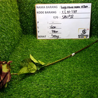 Harga 1 Tangkai Bunga Mawar Travelbon.com