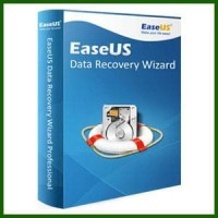 PROMO Software EASEUS Data Recovery Wizard Professional