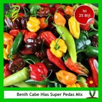 Benih Cabe Hias Super Pedas Mix - Isi 25 Biji