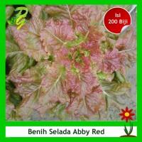 Benih Selada Merah Ava Red - Isi 200 Biji
