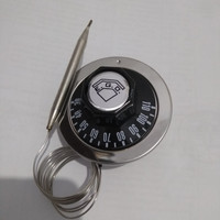 thermostat ego 30-110