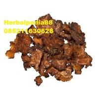 Chuan Xiong Cnidium Sichuan Lovage Rhizome 100 gram