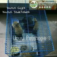 Kandang Kucing Burung Kelinci Hamster Size M