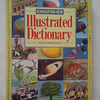 Kingfisher Ilustrated Dictionary import book
