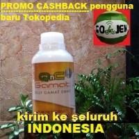 QnC Jelly Gamat Jakarta