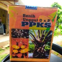 benih kelapa sawit PPKS
