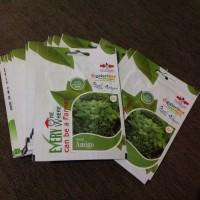 Benih Seledri Amigo Cap Panah Merah 4000 seeds original packing