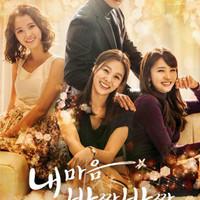 dvd drama korea my heart twinkle twinkle