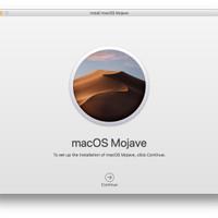 macOS Mojave Bootable Flashdisk Original Murah