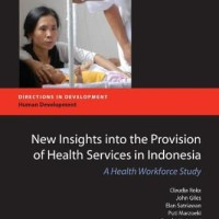 New Insights into the Provision of Health Services in Indonesia (PDF)