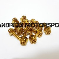 Baut Skrup Body Probolt For Yamaha Nmax 1 set- Gold Colour