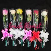 Bunga Mawar Setangkai - bunga wisuda