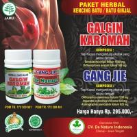 Obat Kencing Batu | Obat Batu Ginjal |Batu Ginja / Kencing Batu Akut