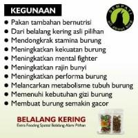 Jual BELALANG KERING R FAM JAYA PAKAN BURUNG MURAI KACER ANI Limited