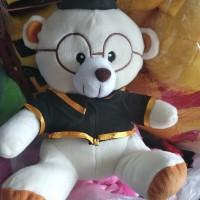 boneka wisuda,boneka bear wisuda,boneka bear kacamata