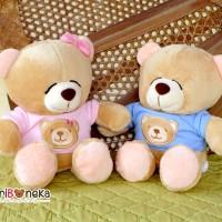 boneka Teddy Bear Kecil Couple ( BT - M01800 )