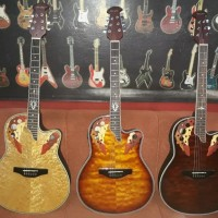 Harga guitar venz schet   WIKIPRICE INDONESIA