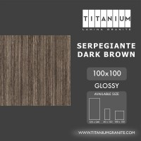 Titanium Granite -SERPEGIANTE DARKBROWN-GLOSSY -100X100 -FREEDELIVERY