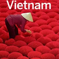 Lonely Planet Vietnam (Travel Guide) [ eBook Wisata Seluruh Vietnam ]