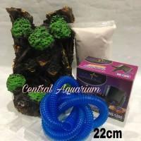 Info Aquascape Air Terjun Katalog.or.id