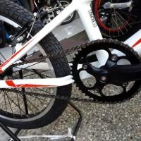 SEPEDA TREND United Rav Race BMX