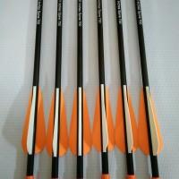 Arrow Fiber