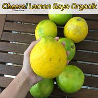 Buah Lemon Lokal Organik Gayo Cheers!