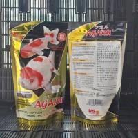 Info Ikan Mas Koki Katalog.or.id