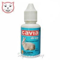 Obat Diare Flu Penambah Nafsu Makan Kelinci Cavia