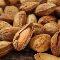 1Kg Almond Roasted ( Panggang ) USA - California murah bakar in shell